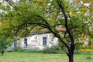 Здание старой школы в Легостаево.