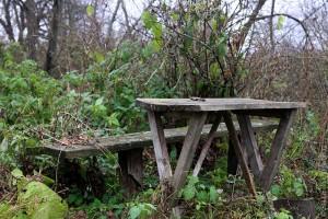 Старый стол в старом саду.