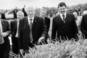 Губернатор осмотрел поля новых сортов озимой пшеницы в ООО Дубовицкое.
