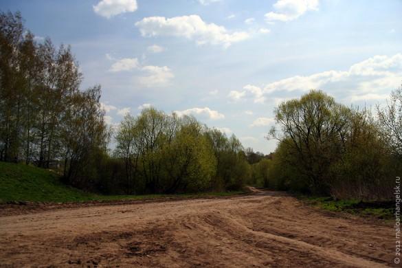 Старая дорога в Александровке. 2010 год.