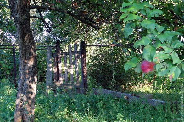 В деревне Алисово.