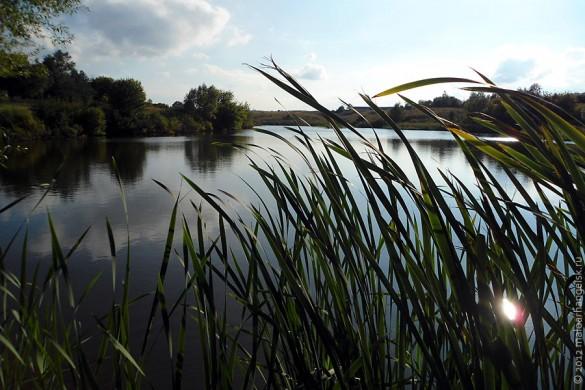 Алисовский пруд малоархангельцы знают хорошо — многие здесь рыбачат.