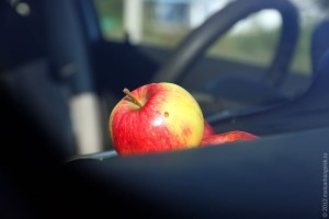 Яблоки под стеклом легкового автомобиля.