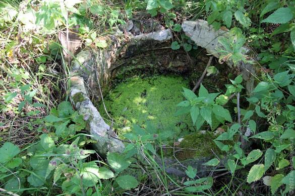 Старый колодец в Каменке.