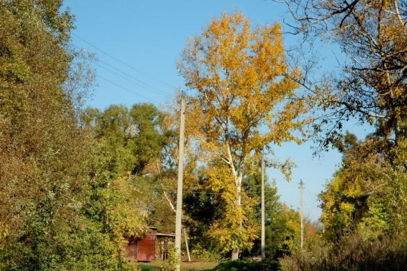 Золотая осень в Удереве.