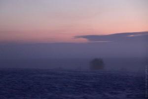Туман 30 декабря 2012 года.