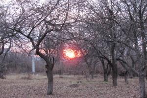 Зимнее солнце в Мамошино.