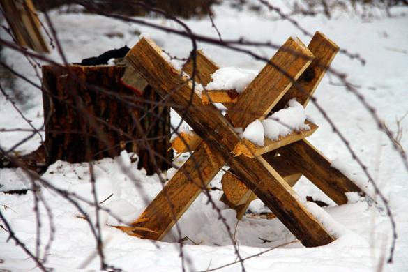 Для защиты от Мороза-воеводы выставлены ежи козлов.