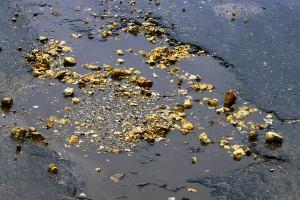 Золотые камни на дороге.