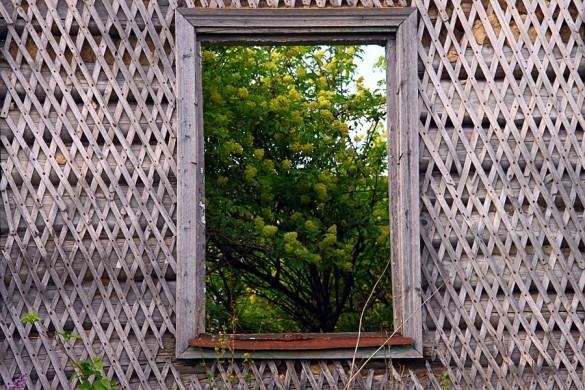 Окно в старом доме.