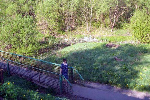 Мостик через ручей Куликов Ржавец.