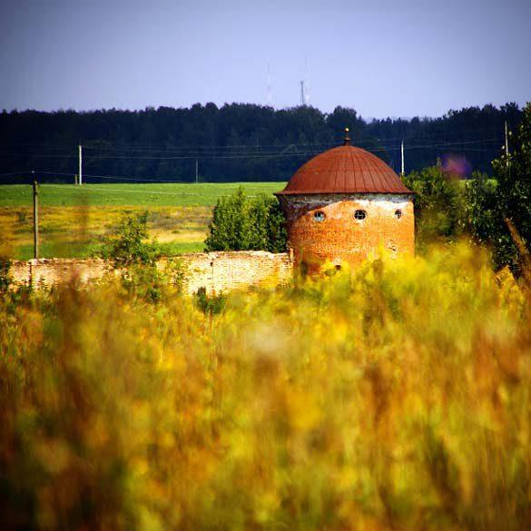 Восточная сторона усадьбы Каменских в Сабурово.