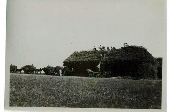 Заготовка сена в селе Дмитровское.