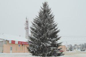Новогодняя ёлка в Малоархангельске. 2019 г.