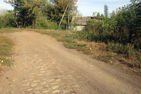 Остаток екатерининского тракта в селе Губкино