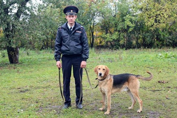 Старший сержант полиции Дмитрий Шелков с Вожаком